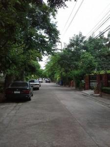 ถนนไปทางปลายซอยของที่ดิน