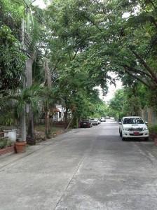 ถนนไปทางท้ายซอยของที่ดิน