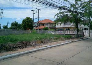 ขายที่ดิน ขนาดพื้นที่ 104 ตารางวา ถนนปทุมธานี-บางคูวัด ถมดินแล้ว ราคาถูก