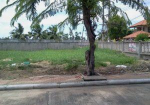 ขายที่ดิน ขนาดพื้นที่ 104 ตารางวา ถนนปทุมธานี-บางคูวัด ราคาถูก ถมดินแล้ว
